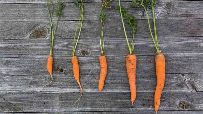 vitamin A toxicity symptoms from supplements