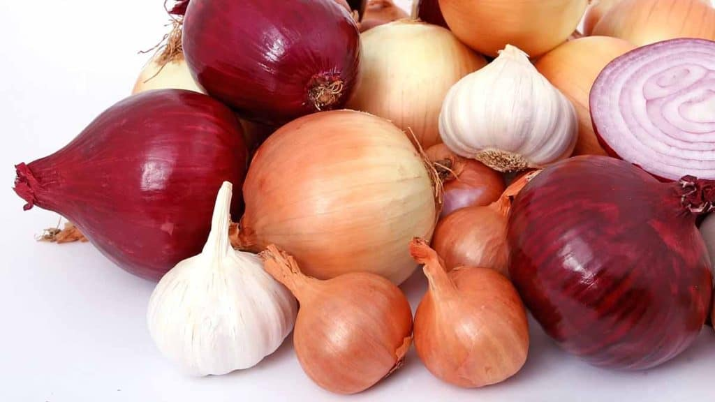 Onios and garlic for mineral absorption