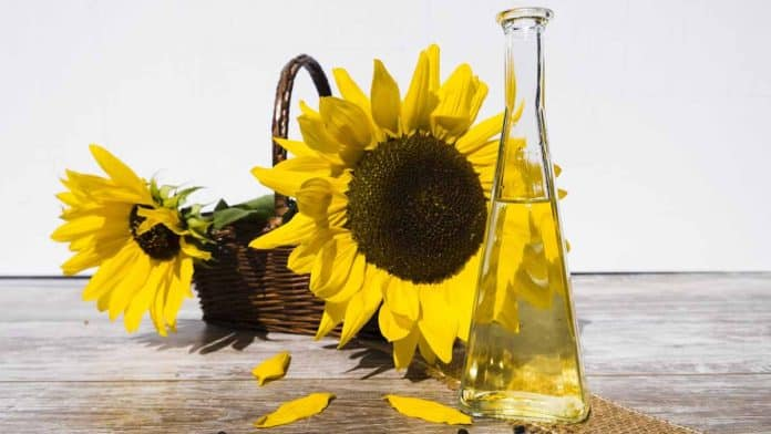 Health benefits of sunflower oil.