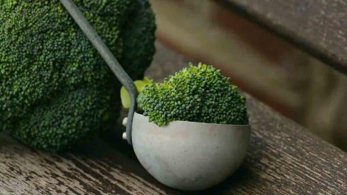 How much dietary fiber in broccoli?