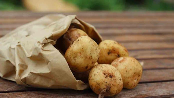 How much fiber in potato, sweet potato, French fries, mashed potatoes, and baked potatoes?