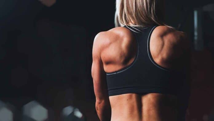 vitamin C supplements for muscle growth