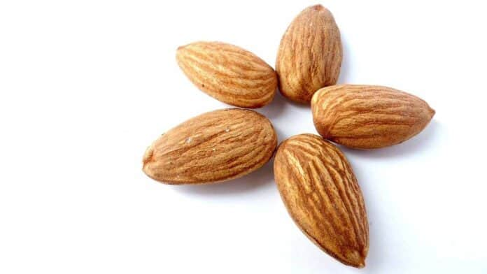 almonds for muscle growth