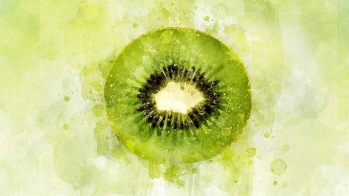 kiwi for muscle growth & sport performance