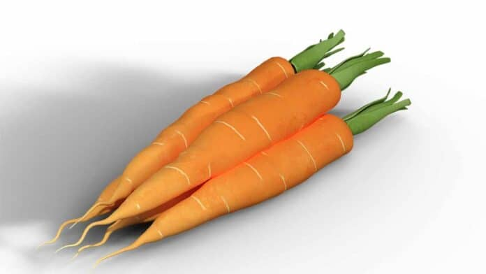 carrots for weight loss