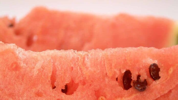 Watermelon seeds are edible