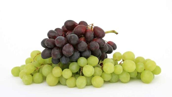grapes are good for the skin